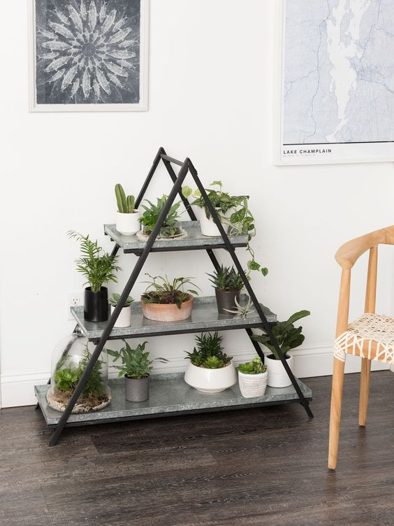 rinnovare-casa-piante